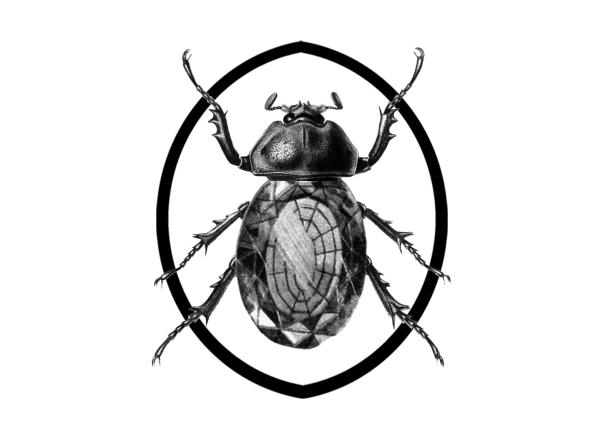 escarabajo_titanico copy