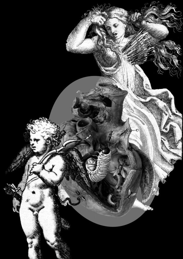 10_Proxima y Eros3b copy