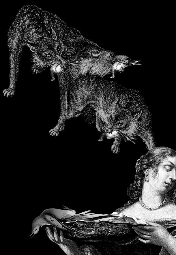 3_lobo y presagio4 copy